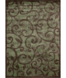RugStudio presents Nourison Expressions XP-02 Brown Machine Woven, Good Quality Area Rug