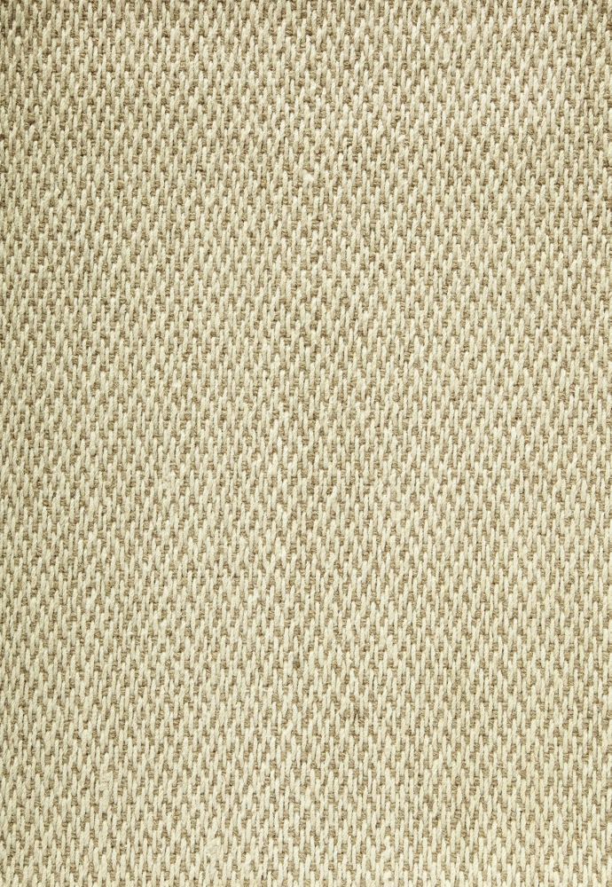 Famous Maker Esste 91901 Tan Area Rug| Size| Returnable Sample Swatch - 91901x62
