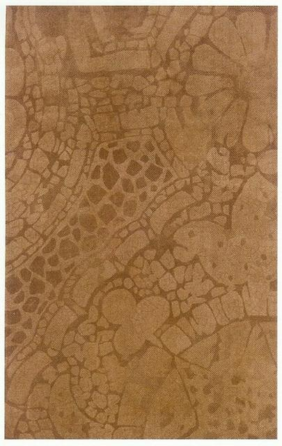 Oriental Weavers Horizon 12132 Area Rug Clearance