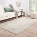 Jaipur Living Heritage Chantilly Hr02 Gray Area Rug Clearance - 75119